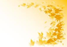 Herfst hopachtergrond Stock Fotografie