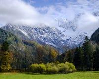 Herfst kleuren royalty-vrije stock fotografie