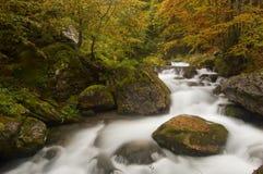 Herfst kleuren in de Franse Pyreneeën Stock Foto's