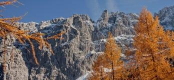 Herfst kleuren in Dolomiet Royalty-vrije Stock Afbeelding