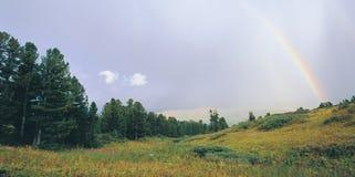 Herfst landschap in de het noordenberg. Stock Foto's