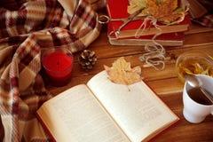 Herfst lezing Stock Afbeeldingen