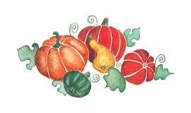 Herfst oogst Stock Afbeeldingen