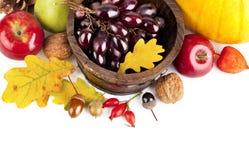 Herfst oogstvruchten en groenten stock afbeeldingen