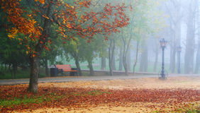 Herfst romantisch Stock Afbeeldingen