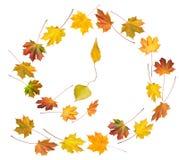 Herfst tijddans royalty-vrije stock afbeelding