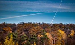 Herfst van de bomen de bosdaling tegen blauwe hemel met witte strepen Royalty-vrije Stock Foto