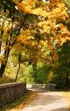 Herfst weg tussen gekleurde bomen Royalty-vrije Stock Afbeelding