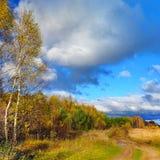 Herfstaard, landschap Stock Foto's