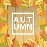 Herfstachtergrond met bladerenkader vector illustratie