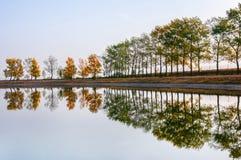 Herfstboomrij op de kust die in het openbare zwemmende meer weerspiegelen stock fotografie