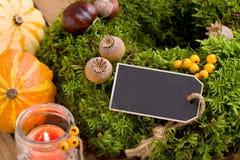 Herfstdecoratie - moskroon met exemplaarruimte Royalty-vrije Stock Foto's