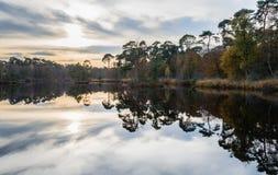 Herfstdiekleuren in een klein meer worden weerspiegeld Royalty-vrije Stock Foto