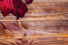 Herfstdruivenblad met houten achtergrond royalty-vrije stock foto's