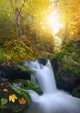 Herfstlandschap met waterval Royalty-vrije Stock Afbeeldingen