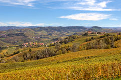 Herfstmening van wijngaarden in Piemonte, Italië Stock Afbeelding