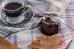 Herfstpicknick met thee bij wollen deken stock foto