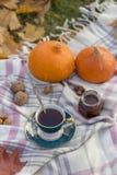 Herfstpicknick met thee bij wollen deken stock afbeeldingen