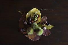 Herfststilleven met bladeren, kastanjes en bessen, op rustieke donkere houten achtergrond stock foto's