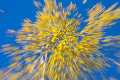 Herfstvuurwerk Stock Foto's