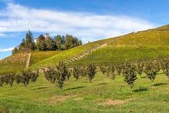 Herfstwijngaarden in Piemonte, Italië Stock Foto