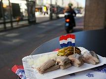 Hering in Amsterdam Royalty-vrije Stock Foto's