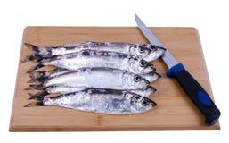 Heringfische bereiteten sich für das Ausbeinen vor Lizenzfreie Stockfotos