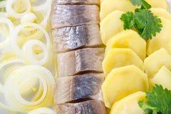 HeringFischfilets mit Kartoffel und Zwiebel Lizenzfreie Stockfotos