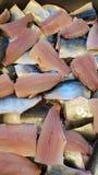 Heringsfilet in boks, Clupea harengus stockbilder