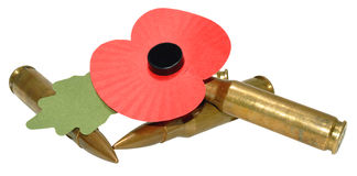 Herinnering Dag Poppy And Bullets Royalty-vrije Stock Afbeelding