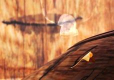 Herinnering in de Herfst Stock Foto