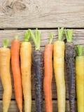 Heritage carrot varieties Stock Photos