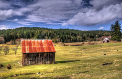Heritage farm. A heritage sheep farm on the Canadian west coast islands Stock Photography