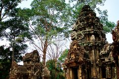 Heritage site in Angkor Wat, Cambodia. This area is known as the largest religious monument in the world Stock Photo