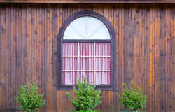 Heritage Window and bushes Royalty Free Stock Photos