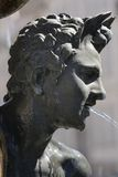Herkules Fountain Royalty Free Stock Photos