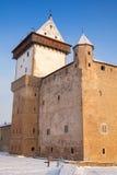 Herman castle in winter, Narva. Estonia Stock Image