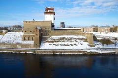 Herman ` s kasztelu zbliżenie, pogodny Marcowy dzień Narva, Estonia Fotografia Stock