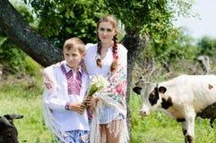 Hermana adolescente y pequeño hermano por el rebaño de vacas Fotos de archivo