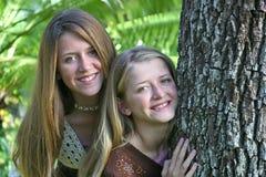 Hermanas adolescentes de Tree Imágenes de archivo libres de regalías