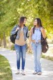 Hermanas adultas jovenes del gemelo de la raza mixta que caminan junto Imagen de archivo libre de regalías