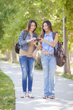 Hermanas adultas jovenes del gemelo de la raza mixta que comparten experiencia del teléfono celular Fotografía de archivo libre de regalías