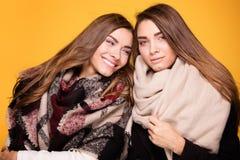 Hermanas alegres de los gemelos que presentan con la bufanda Fotografía de archivo libre de regalías