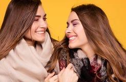 Hermanas alegres de los gemelos que presentan con la bufanda Imagen de archivo libre de regalías