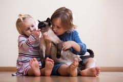 Hermanas con el gato Imagen de archivo