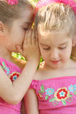 Hermanas gemelas que comparten un secreto Imagen de archivo libre de regalías
