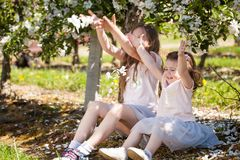 Hermanas hermosas en un jardín de la primavera Imagen de archivo