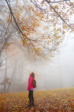 Hermanas que disfrutan del tiempo junto el la caída que camina viaje Imagen de archivo libre de regalías