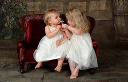 Hermanas que huelen la flor Imagen de archivo libre de regalías