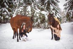 Hermanas y caballo gemelos en el bosque del invierno Imagen de archivo libre de regalías